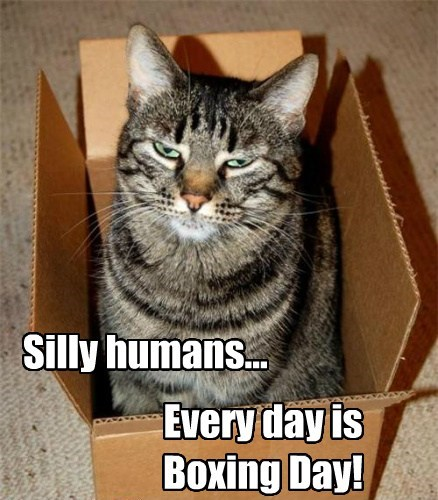 every-day-is-boxing-day