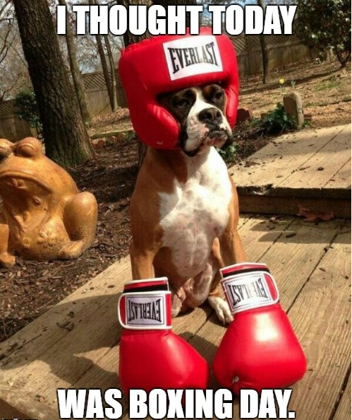 funny-boxing-day-image
